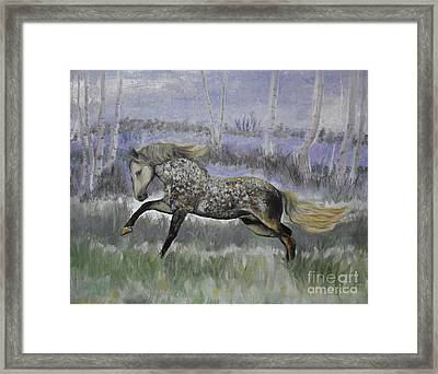 Warrior Of Magical Realms Framed Print