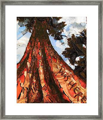 Was Here 3 Framed Print by Alicia  LaRue