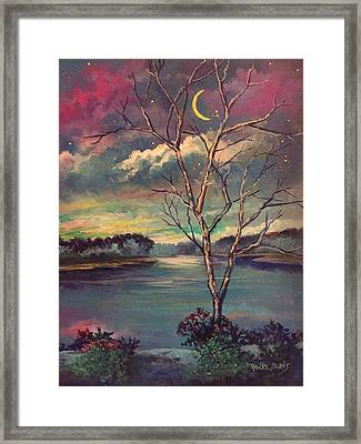 Was Like Stained Glass Framed Print by Randy Burns