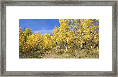 Wasatch Fall Framed Print by Chad Dutson