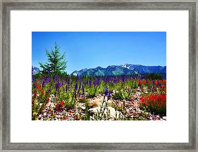 Wasatch Mountains In Spring Framed Print by Tracie Kaska