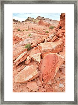 Framed Print featuring the photograph Wash 4 Color In Valley Of Fire by Ray Mathis