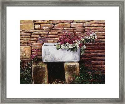 Wash Basin Flowers Framed Print by David Lloyd Glover