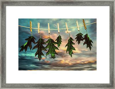 Wash Day Framed Print by Bob Orsillo