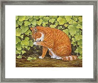 Wash Day Framed Print by Ditz
