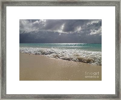 Washed Ashore  Framed Print by Clay Cofer