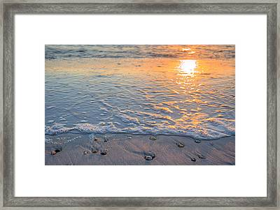 Washed Up On St Joe State Park Framed Print by JC Findley