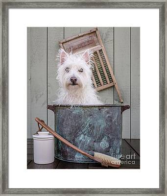 Washing The Dog Framed Print