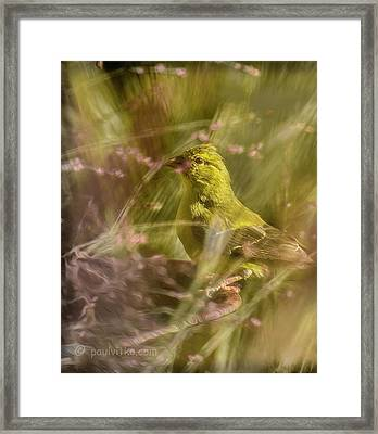 Watch What You Eat.... Framed Print