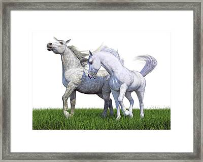 Watch Your Back Framed Print by Betsy Knapp