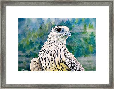 Watchful Eye Framed Print by Raymond Edmonds