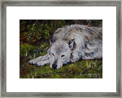Watchful Rest Framed Print