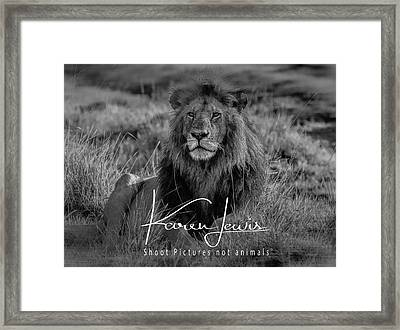 Framed Print featuring the photograph Watching And Waiting by Karen Lewis