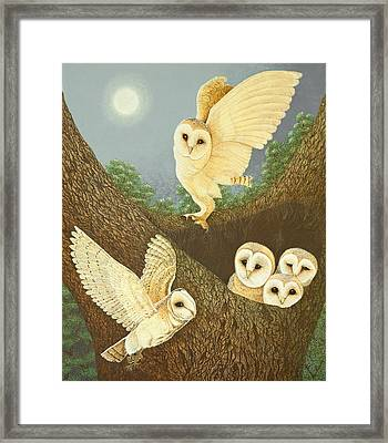 Watching And Waiting Framed Print by Pat Scott