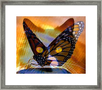 Framed Print featuring the photograph Watching Butterlies by David Lee Thompson