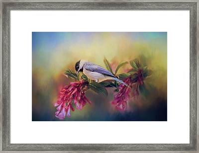Watching Flowers Bloom Bird Art Framed Print