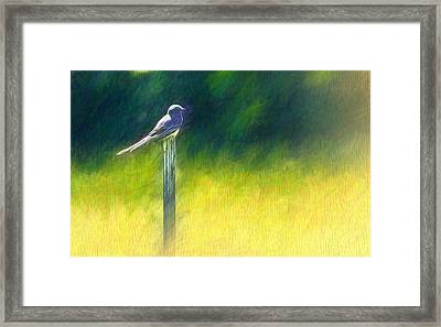 Watching For Supper Framed Print