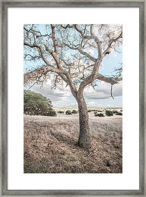 Framed Print featuring the photograph Watching In Silence by Alexander Kunz