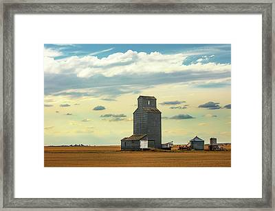 Watching O'er The Plains Framed Print