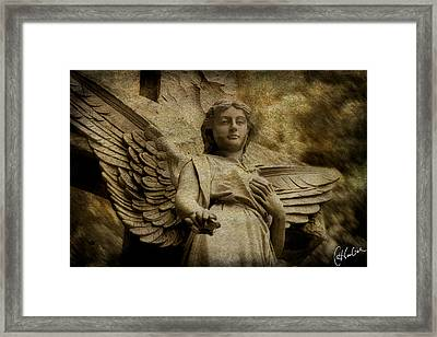 Watching Over Us Framed Print by Christine Hauber