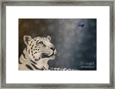 Watching The Dance Framed Print by Pauline Sharp
