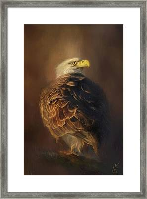Watching The Nest Eagle Art Framed Print by Jai Johnson
