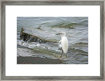 Watching The Tide Come In Framed Print