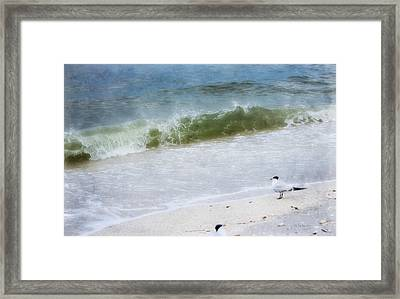 Watching Waves Crest And Break Framed Print