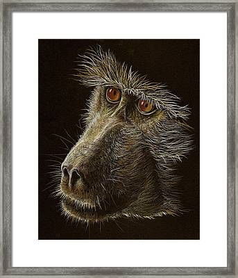 Framed Print featuring the drawing Watching You by Heidi Kriel