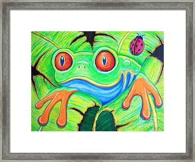 Watching You Red Eyed Tree Frog Framed Print by Nick Gustafson