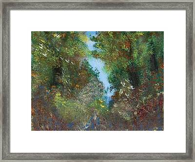 Water And Sky Framed Print by Eugene Coderre
