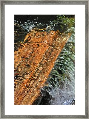 Water And Wood Framed Print