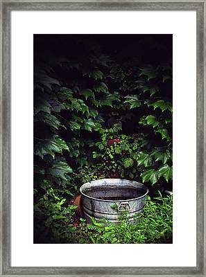 Framed Print featuring the photograph Water Bearer by Jessica Brawley
