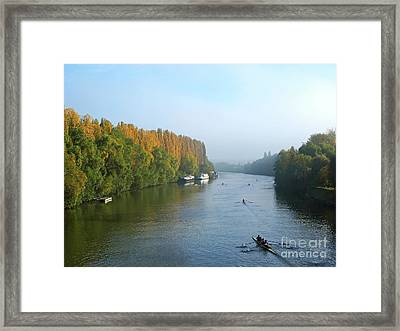 Water Boatmen Of The River Oise Framed Print by Alex Cassels
