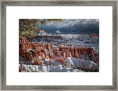 Winter Breeze Framed Print by Edgars Erglis