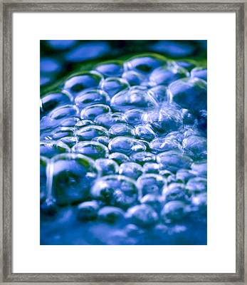 Water Bubbles Framed Print by Frank Tschakert