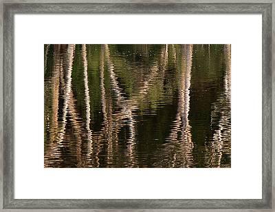 Water Bumps Framed Print by David Benson