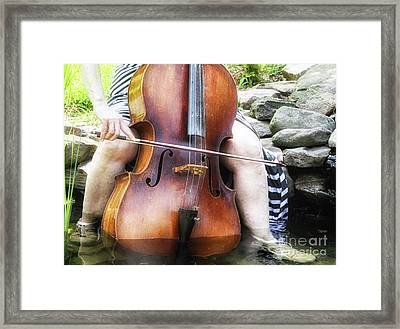 Water Cello  Framed Print by Steven Digman