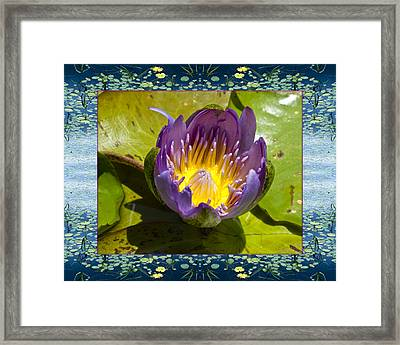 Framed Print featuring the photograph Water Chalice by Bell And Todd