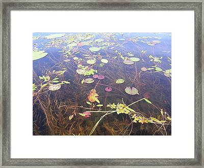 Water Colors Framed Print by Peter  McIntosh