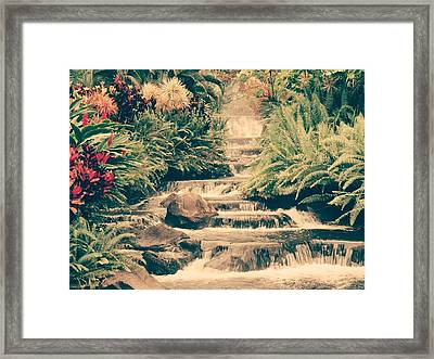 Water Creek Framed Print by Sheila Mcdonald