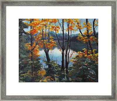 Water Framed Print by Diane Daigle