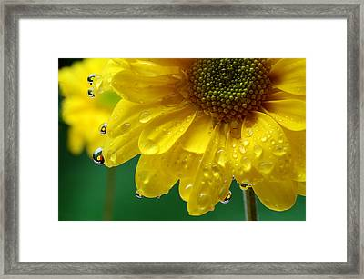 Water Drop Reflections I I I Framed Print