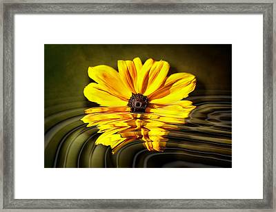 Framed Print featuring the photograph Water Flower by Gary Smith
