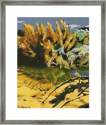 Water Found Framed Print