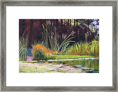 Water Garden Landscape Framed Print by Melody Cleary