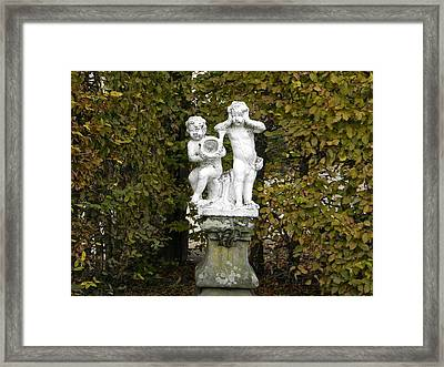 Water Framed Print by Guillermo Mason