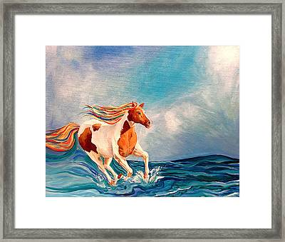 Water Horse Framed Print by Rebecca Robinson