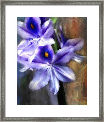 Water Hyacinth Framed Print by Fred Baird