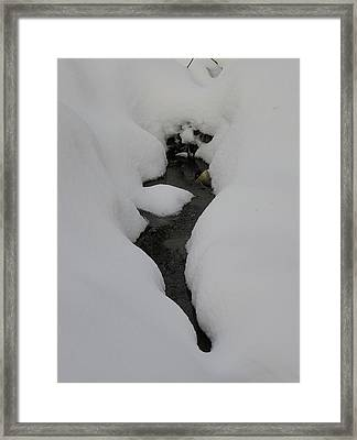 Water In Snow Framed Print by Richard Mitchell